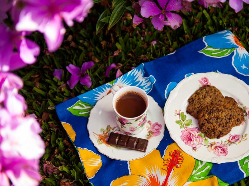 cookies com chocolate e chocolate quente – o chef e a chata