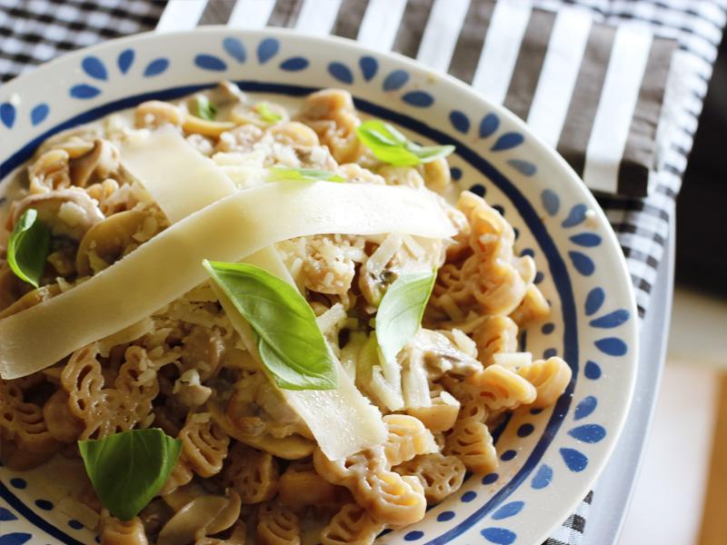 macarrão com molho de champignons e queijo